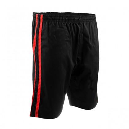 Summer / Demo Shorts