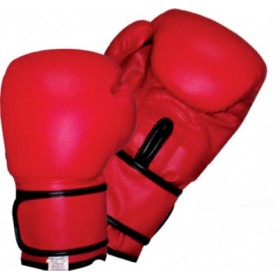 Training Boxing Gloves Vinyl #2121