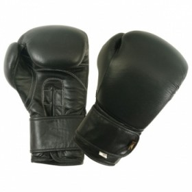 Boxing Gloves G/L #2100