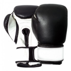 Hook & Loop Boxing Gloves G/L.99 #2102