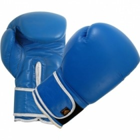 Boxing Gloves Blue G/L 2103