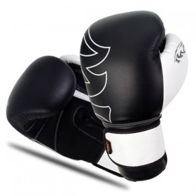 Boxing Gloves Leather/Mesh
