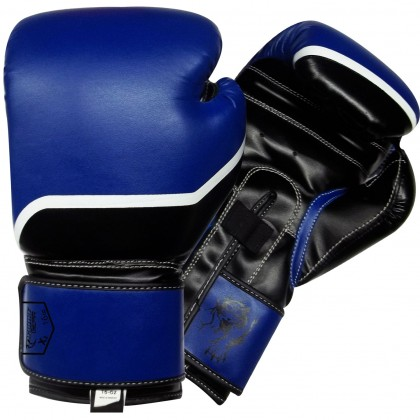 Boxing Gloves Black / Blue