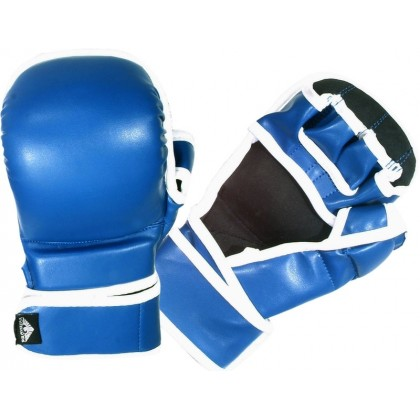 Sparring gloves Vinyl #2031BU