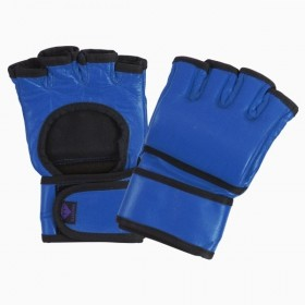 Fight Gloves Blue